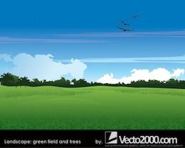 paisaje. campo verde y los árboles