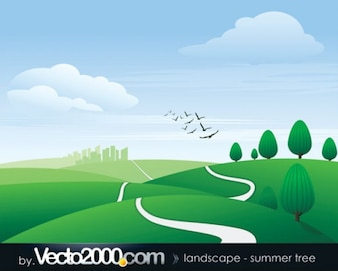 paisaje. verano árbol