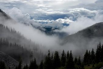 Paisaje brumoso y nublado