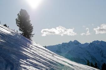 Paisaje con nieve en un día soleado