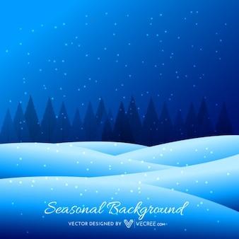 Paisaje de invierno de noche con bosque de fondo