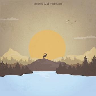 Paisaje de puesta del sol con un ciervo