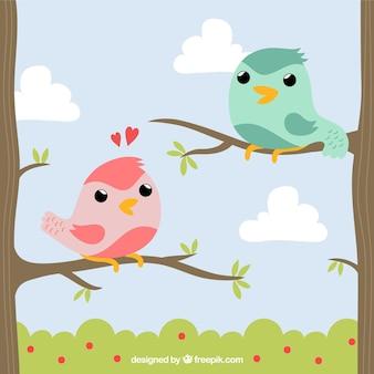 Pájaros lindos