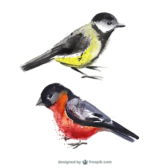 Pájaros pintados a mano
