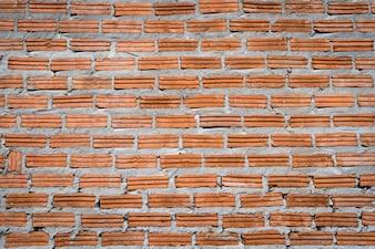 Pared de ladrillos con cemento fresco