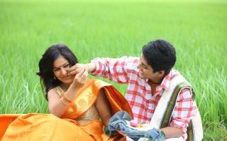 pareja, sentado en el campo de arroz