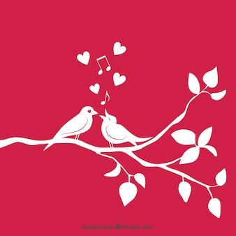 Pareja de pájaros en rama