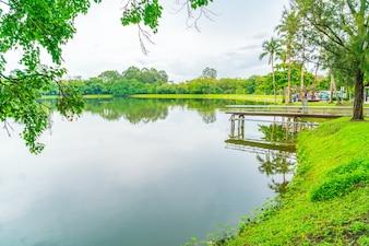 Parque verde hermoso con el lago, Ang Kaew en Chiang Mai Universi