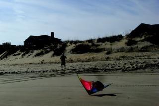 pato - el vuelo de cometas, la arena