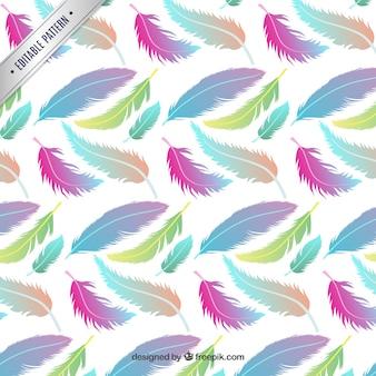 patrón con plumas de colores