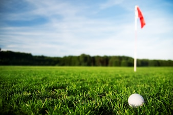 Pelota de golf en un campo de césped