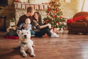 Perro sentado en el suelo de madera con una familia de fondo