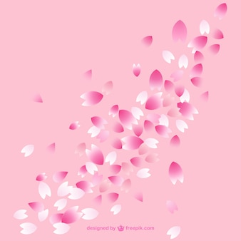 Pétalos de flor de cerezo