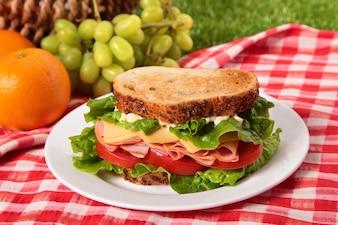 Picnic de verano con sándwich tostado de jamón y queso
