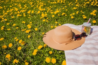 Picnic en el campo con elementos de verano