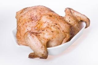 Piel de pollo pájaro