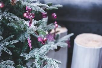 Pino con las hojas nevadas y velas