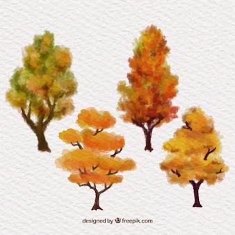 Pintados a mano árboles del otoño
