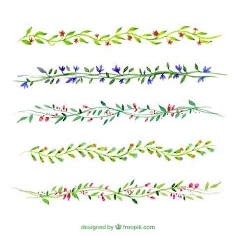 Pintados a mano ramas florales