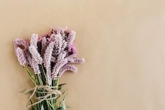 Planta con flores lilas