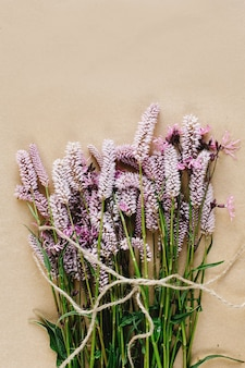 Plantas con flores lilas