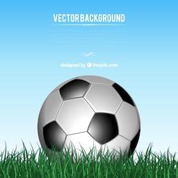 Plantilla con balón de fútbol en la hierba