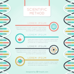 Plantilla de infografía de método científico