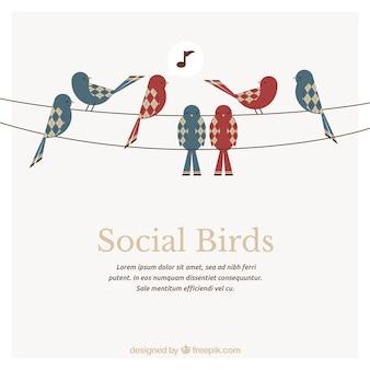 Plantilla pájaros Sociales