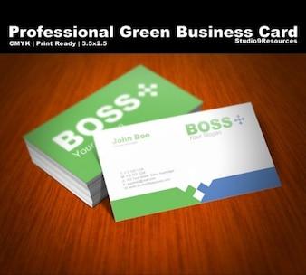 plantilla profesional tarjeta de visita establecido psd