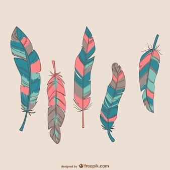 Plumas de aves coloridas