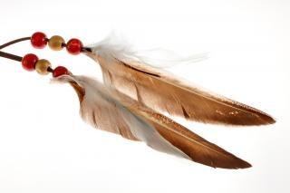 plumas Dreamcatcher
