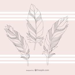 Plumas ilustración