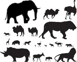 población de vectores animales africanos