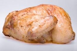 pollo pájaro blanco