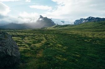 Prado verde y picos nevados
