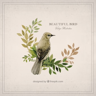 Precioso pájaro de acuarela
