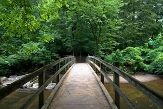 Puente en el parque