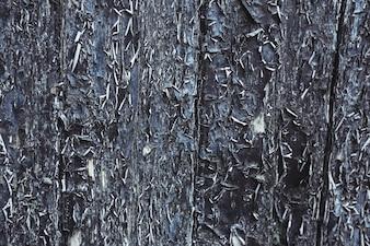 Puerta vieja con las peladuras de pintura
