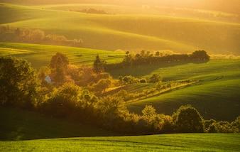 Puesta de sol mágica en tierras de cultivo de Moravia del sur