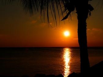 Puesta del sol tropical roja
