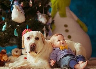 """Niño niño apoyado en perro blanco"""