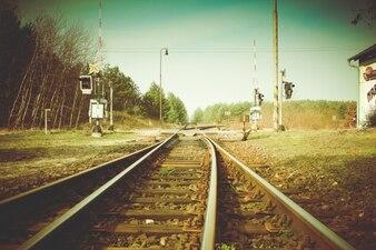 Cruce de tren
