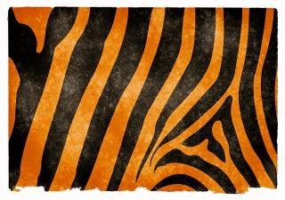 Rayas de tigre de papel del grunge