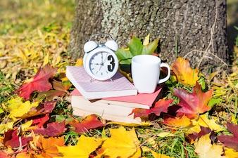 Reloj blanco y libros sobre hojas secas