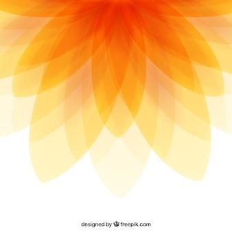 Resumen de antecedentes de flores