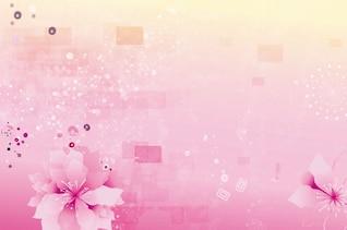 resumen de antecedentes flores de color rosa