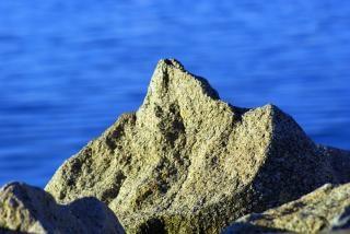Roca al mar, la costa