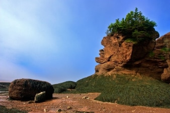 Rocas maceta hdr
