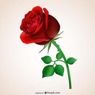 Rosa roja con hojas