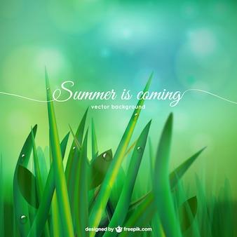 Se acerca el verano de fondo